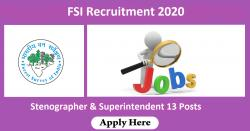 FSI Recruitment 2020 - Stenographer & Superintendent 13 Posts