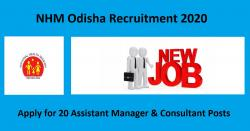 NHM Odisha Recruitment 2020 for 20 Assistant Manager & Consultant Posts